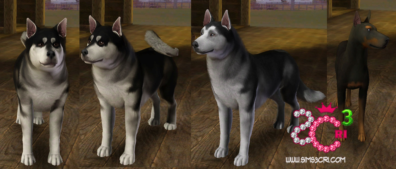 ts3 ep5_preview_dogs
