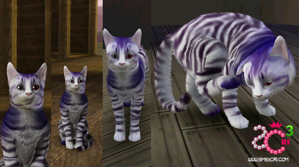 ts3 ep5_preview_simscricat